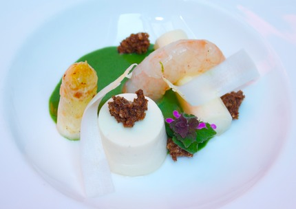 Panna cotta of white asparagus & crudity, served with a cure Argentina shrimps, rye bread crumble, and nettle sauce, pluck red nettle flower.