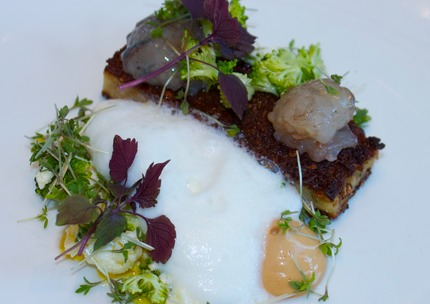 -Rye bread terrine stuff with culmule Brandade, cure Crabs served with crabs bisque & krondill mayo, vasterbotten cheeses chiffon, plucks cauliflower & broccoli top mariner in raps oil s+p, pluck cress & red cress.