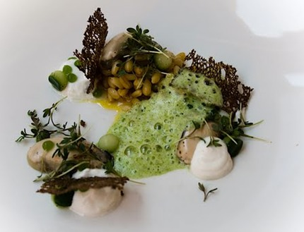 "-Fresh oysters served marinaded wheat, scoop cucumber crudity, pluck cress, malt tuile, and ""skyr"" horseradish cream, parsley & cress foam."